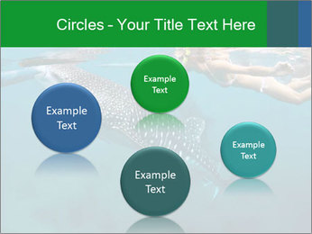 0000077158 PowerPoint Template - Slide 77