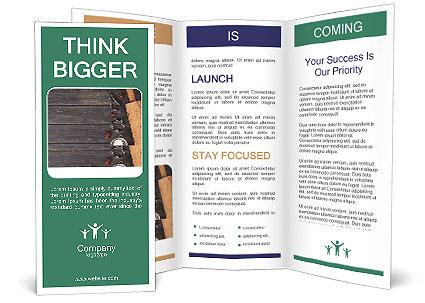 0000077162 Brochure Template