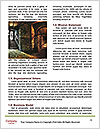 0000077167 Word Template - Page 4