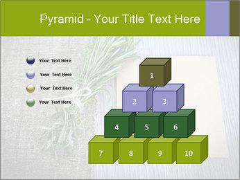 0000077184 PowerPoint Templates - Slide 31