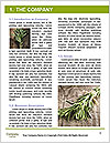 0000077184 Word Templates - Page 3