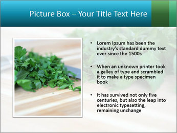 0000077185 PowerPoint Template - Slide 13