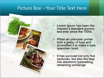 0000077185 PowerPoint Template - Slide 17