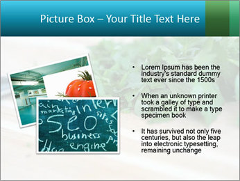 0000077185 PowerPoint Template - Slide 20