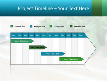 0000077185 PowerPoint Template - Slide 25