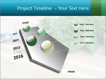 0000077185 PowerPoint Template - Slide 26