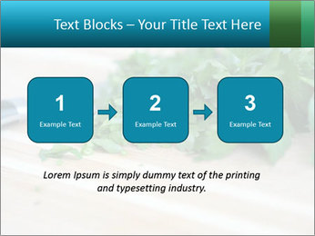 0000077185 PowerPoint Template - Slide 71