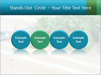 0000077185 PowerPoint Template - Slide 76