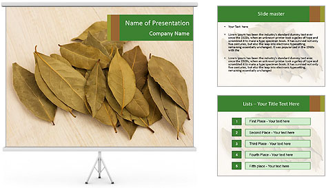 0000077186 PowerPoint Template