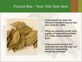 0000077186 PowerPoint Template - Slide 13