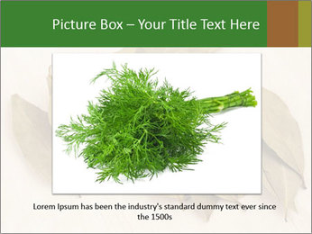 0000077186 PowerPoint Template - Slide 15