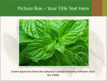 0000077186 PowerPoint Template - Slide 16