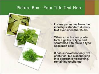 0000077186 PowerPoint Template - Slide 17