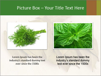 0000077186 PowerPoint Template - Slide 18