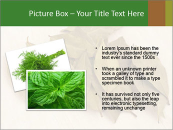0000077186 PowerPoint Template - Slide 20