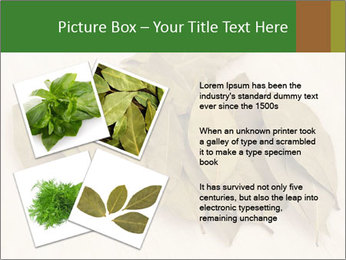 0000077186 PowerPoint Template - Slide 23