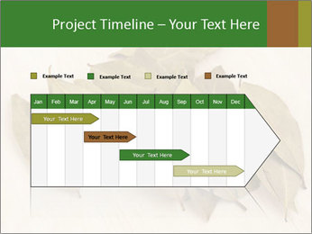 0000077186 PowerPoint Template - Slide 25