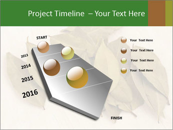 0000077186 PowerPoint Template - Slide 26