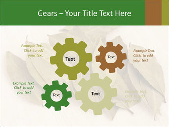 0000077186 PowerPoint Template - Slide 47