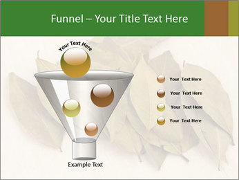 0000077186 PowerPoint Template - Slide 63