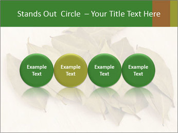 0000077186 PowerPoint Template - Slide 76