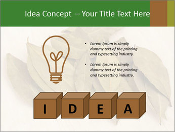 0000077186 PowerPoint Template - Slide 80