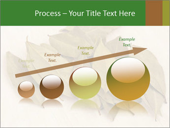 0000077186 PowerPoint Template - Slide 87