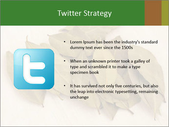 0000077186 PowerPoint Template - Slide 9