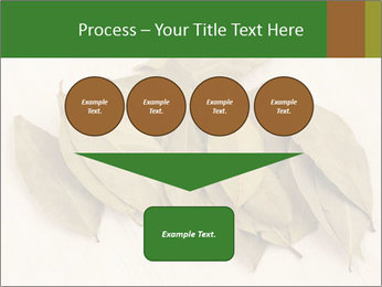 0000077186 PowerPoint Template - Slide 93