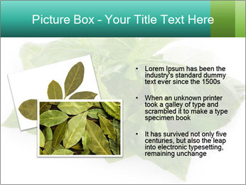 0000077188 PowerPoint Templates - Slide 20