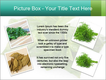 0000077188 PowerPoint Templates - Slide 24