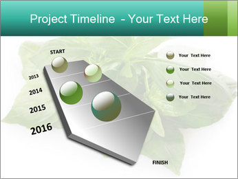 0000077188 PowerPoint Templates - Slide 26
