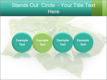 0000077188 PowerPoint Templates - Slide 76