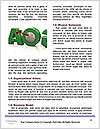 0000077195 Word Template - Page 4