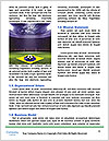 0000077196 Word Template - Page 4