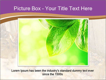 0000077197 PowerPoint Template - Slide 16