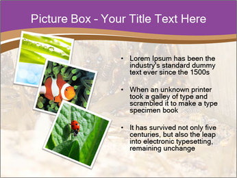 0000077197 PowerPoint Template - Slide 17
