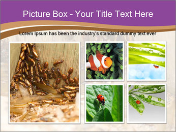 0000077197 PowerPoint Template - Slide 19