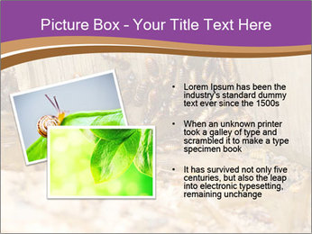 0000077197 PowerPoint Template - Slide 20