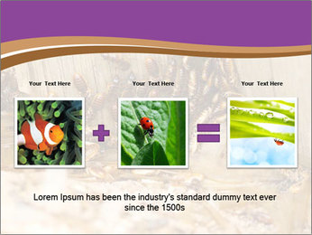 0000077197 PowerPoint Template - Slide 22