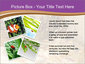 0000077197 PowerPoint Template - Slide 23