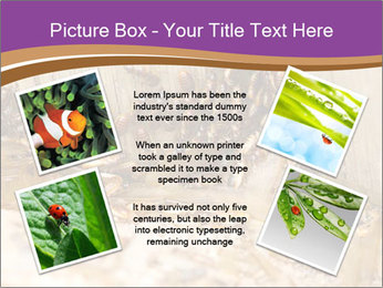 0000077197 PowerPoint Template - Slide 24