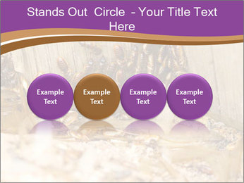 0000077197 PowerPoint Template - Slide 76
