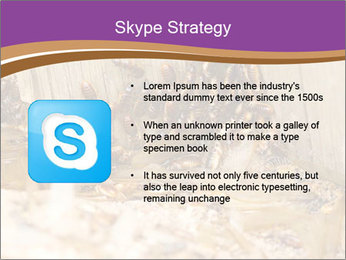 0000077197 PowerPoint Template - Slide 8