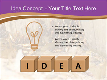 0000077197 PowerPoint Template - Slide 80