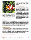 0000077197 Word Template - Page 4