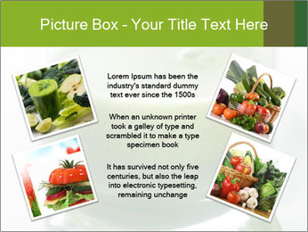 0000077199 PowerPoint Template - Slide 24
