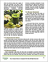 0000077199 Word Template - Page 4