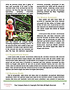 0000077203 Word Templates - Page 4
