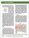 0000077209 Word Template - Page 3